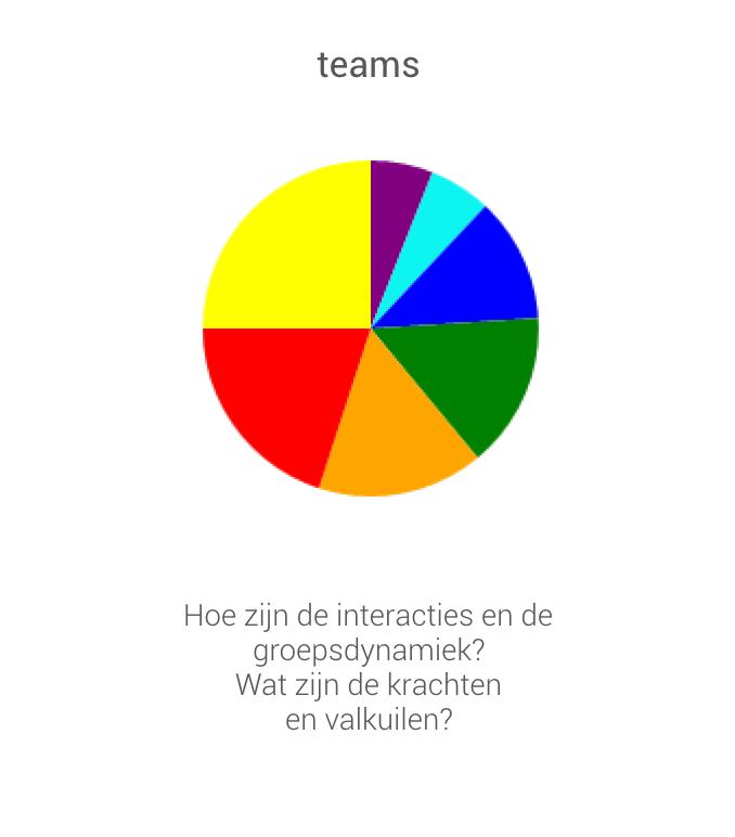 iwcommpany teamprofiel drijfveren Profile Dynamics